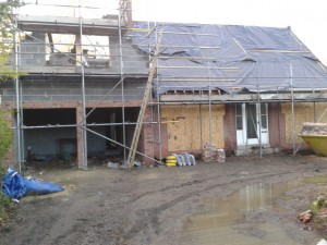 The Crecsent at early stages